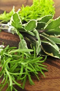 Garden Fresh Herbs