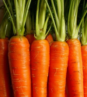 Healthy Foods: Carrots