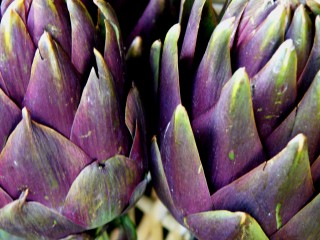 Holistic Nutrition: Artichokes